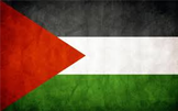 Gaza : les partenaires témoignent